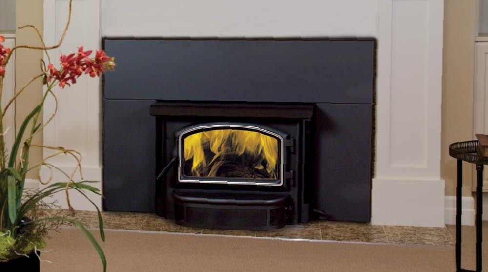 wood burning insert