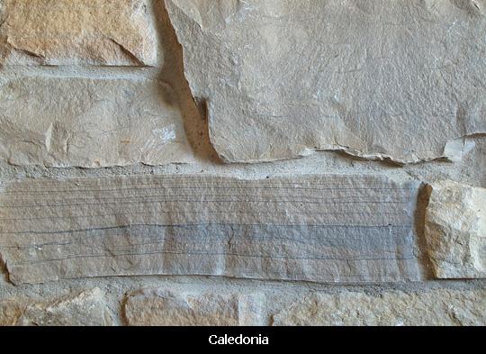 HM nsv-caledonia